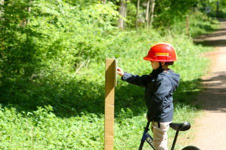 Salcey Forest Gruffalo Spotting