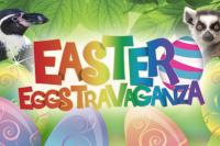 West Midlands Safari Park Easter Eggstravaganza