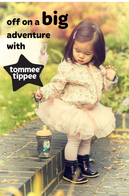 TTBigAdventure-fairy