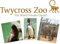 twycross_zoo
